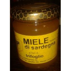 Miele di Sardegna Trifoglio