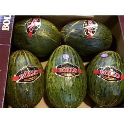 1 Melone Bollo Supreme Quality