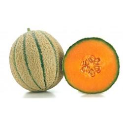 Melone Retato 1 pezzo