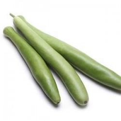 Zucchina Lunga Siciliana CUCUZZA 1 pezzo
