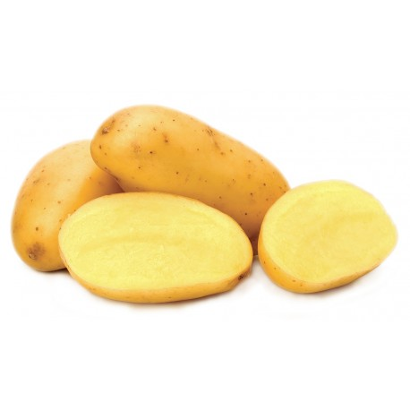 1 kg Patata Pasta Gialla
