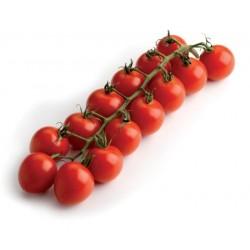 1/2  kg Pomodoro Cherry