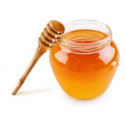 Miele di Sardegna Asfodelo