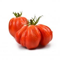 1 kg Pomodoro Cuore di Bue