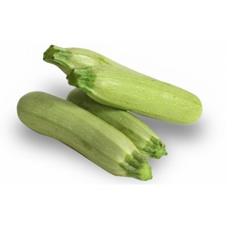 1 kg Zucchine Chiare