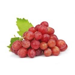 Uva Rossa Dolcissima Cilena 500 gr